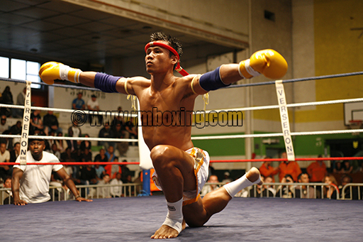 Tan Rmboxing Shock Muay 2